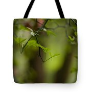 Leaves And Thorns Tote Bag