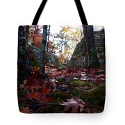 Leaves In The Forest Tote Bag
