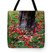 Leaves On The Ground Tote Bag