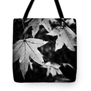 Leaves Without Color Tote Bag