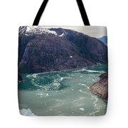 Leconte Glacier Tote Bag by Mike Reid