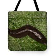 Leech Tote Bag