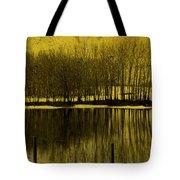 Lemon Lake Tote Bag