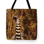 Lemur Tail Tote Bag