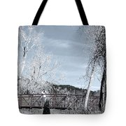 Lenore With Camera At The Garden Of The Gods 2 Tote Bag