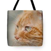 Leo The Kitty Beast Tote Bag