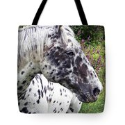 Leopard Of The Pacific Tote Bag
