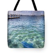 Leopard Ray Tote Bag