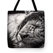 Let Sleeping Tiger Lie Tote Bag