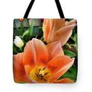 Lets All Dance For The Tulips Are Out Tote Bag