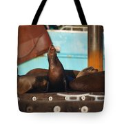 Lets Bark It Out Then Tote Bag