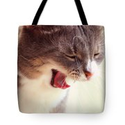 Lets Go Sleeping. Kitty Time Tote Bag