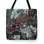 Lichen Abstract II Tote Bag