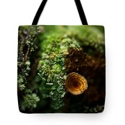Lichen And Fungi 1 Tote Bag