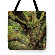 Lichen Covered Apple Tree, Walled Tote Bag
