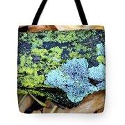 Lichen On Fallen Branch Tote Bag