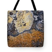 Lichen Pattern Series - 19 Tote Bag