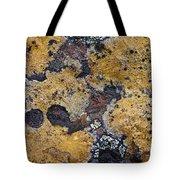 Lichen Pattern Series - 10 Tote Bag