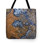 Lichen Pattern Series - 35 Tote Bag