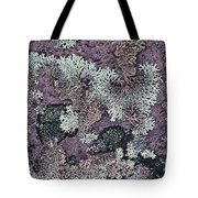Lichen Pattern Series - 57 Tote Bag