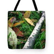 Lichen Recycling Tote Bag