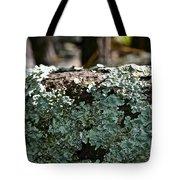 Lichens Lace Tote Bag