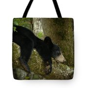 Life Is A Bear Sometimes Tote Bag