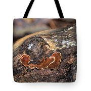 Life On A Log 3 Tote Bag
