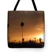 Life Source... Tote Bag