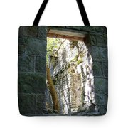 Life Through The Ruins Tote Bag