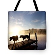 Light Of My Life Boxer Dogs On Dock Tote Bag