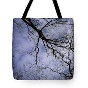 Lightening Branches Tote Bag