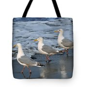 Lighthearted Seagulls Tote Bag
