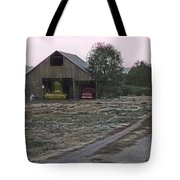 Lightly Colored Barn Tote Bag