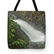 Likeke Falls 51 Tote Bag
