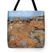 Likin' The Lichen Tote Bag