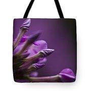 Lilac Spirals. Tote Bag