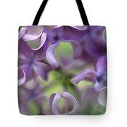 Lilac Syringa Sp Flower, Close Tote Bag