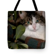 Lila's Nest Tote Bag