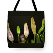 Lilies In A Row Tote Bag