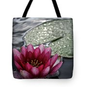 Lily And Pad Tote Bag