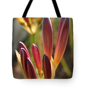 Lily Candles Tote Bag