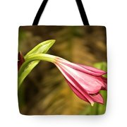 Lily In Pink Tote Bag