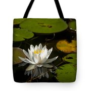 Lily On The Pond Tote Bag