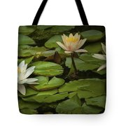 Lily Pads And Blossoms. No186 Tote Bag