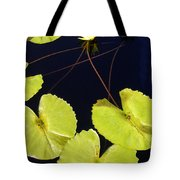 Lily Pads And Lotus Blossom Tote Bag