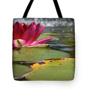 Lily Pads And Petals Tote Bag
