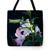 Lily Pod To Flower Tote Bag