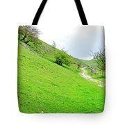 Lin Dale Tote Bag by Rod Johnson