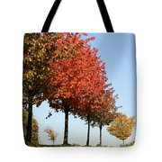 Line Of Autumn Trees Tote Bag